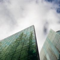 Trees reflected in glass buildings